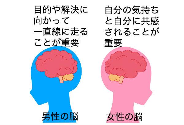 男性の脳と女性の脳の違い