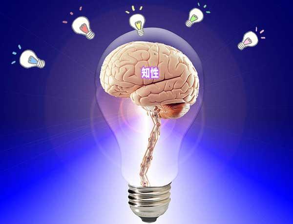 電球で知性を表現