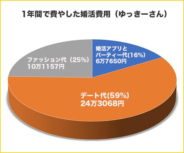 婚活費用の円グラフ